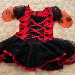 🐞Halloween Leg Avenue Lady Bug Women's Costume